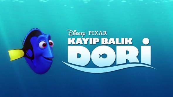 KAYIP BALIK DORİ